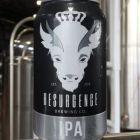 Resurgence Brewing Company IPA / 6-pack cans