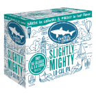Dogfish Head Slightly Mighty / 12-pack cans