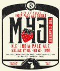 Old Nation Brewing Co. M-43 Tart Strawberry / 4-pack cans