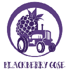 Hamburg Brewing Co. Blackberrry Gose / 6-pack cans