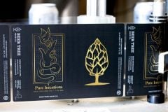 Beer Tree Pure Intentions / 4-pack cans