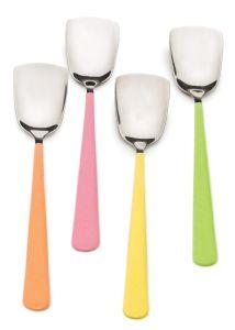 Endurance Ice Cream Spoons