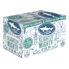 Dogfish Head Slightly Mighty IPA / 6-pack cans