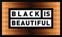 Community Beer Works Black Is Beautiful / 4-pack cans