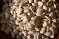 Rancho Gordo Cassoulet (Tarbais) Bean 16 oz Bag