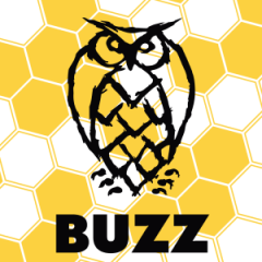 Night Shift Brewing Buzz / 4-pack cans