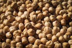 Rancho Gordo - Ceci / Garbanzo Beans