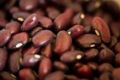 Rancho Gordo Domingo Rojo Bean 16 oz Bag