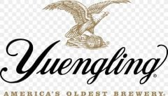 Yuengling Light Lager / 24-pack bottles